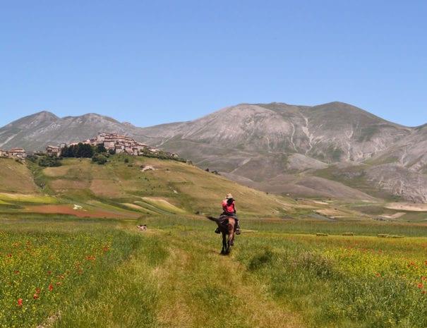 Castelluccio ed il monte Vettore