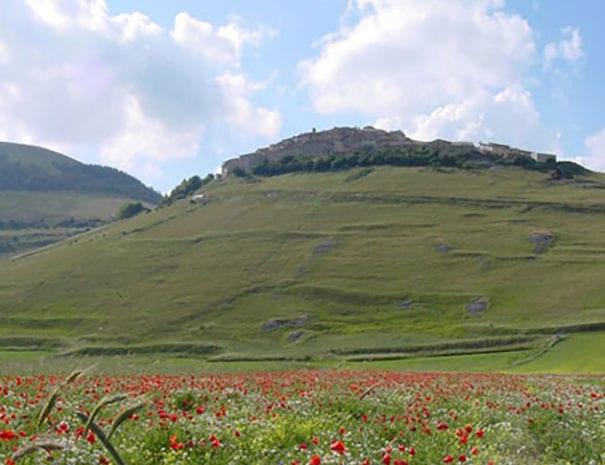 La fioritura della piana di Castelluccio
