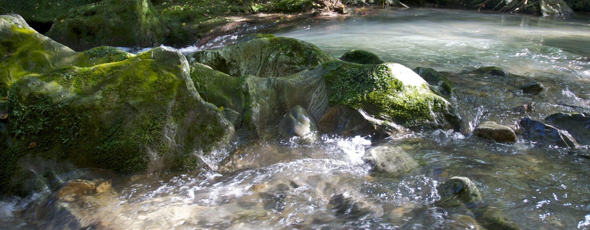 dettagli-fiume-1